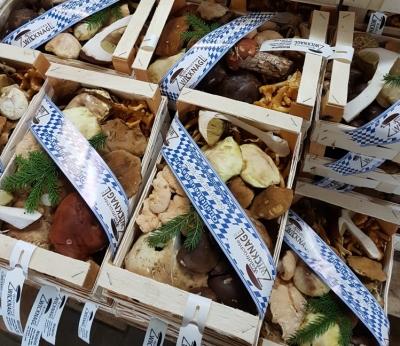 Frische Waldpilze - 1 Kg Packung und 1 Pilzpulver für Soße - 15g