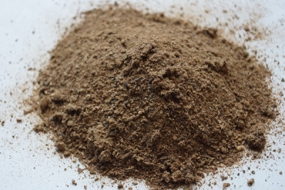 Kräuterseitlinge pulver für Soße - 100 g Packung