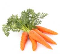 Frische Bio Karotten - 500 g