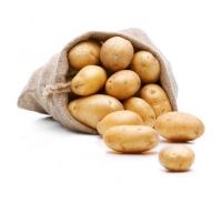 Frische Bio Kartoffeln - 1 kg
