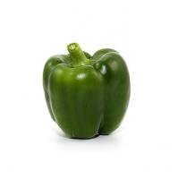 Frische Bio Paprika grün- Stk.