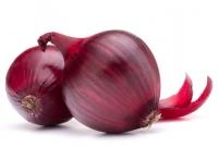 Frische Bio Zwiebeln rot - 1 kg