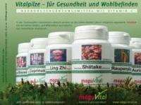 Pilzextraktmischung- Vitalpilze