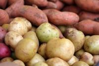 Frische verschiedene Kartoffeln - 5 kg