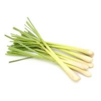 Zitronengras oder Lemongrass  - 100g Verpackung