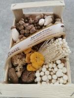 Frische Kulturpilze - 1 Kg und 1 Packung Pilzpulver für Soße - 25 g